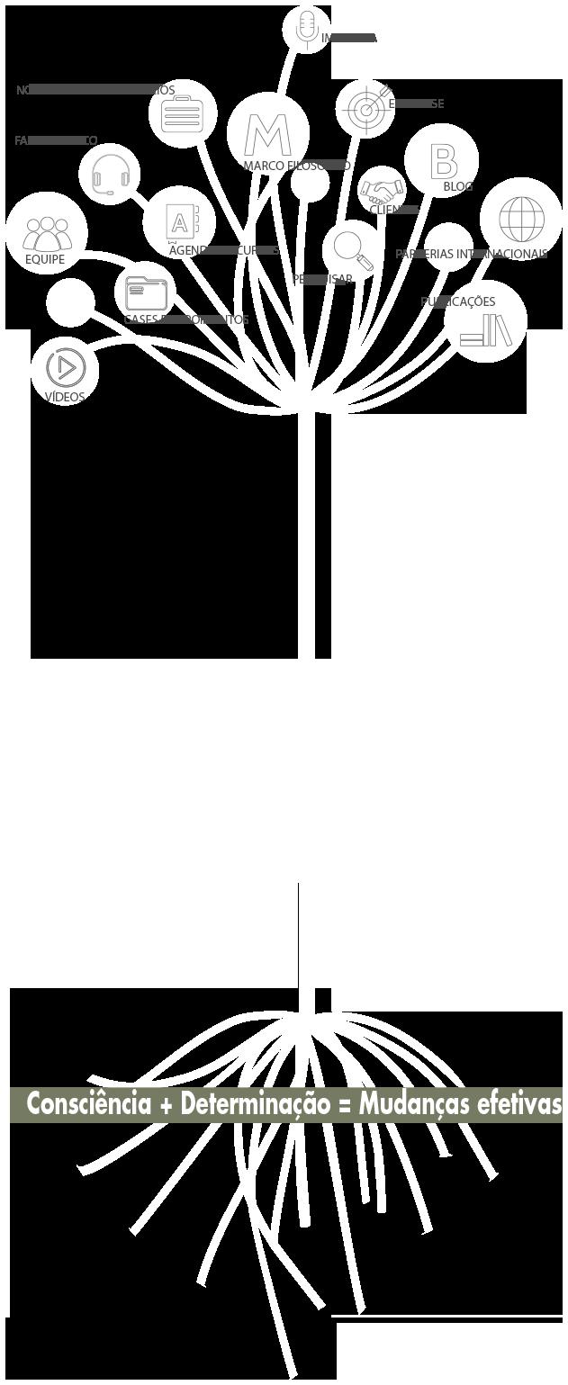 arvore